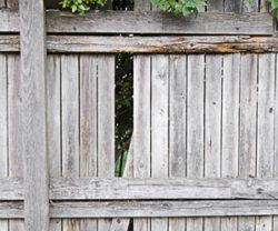 Damaged fence panel